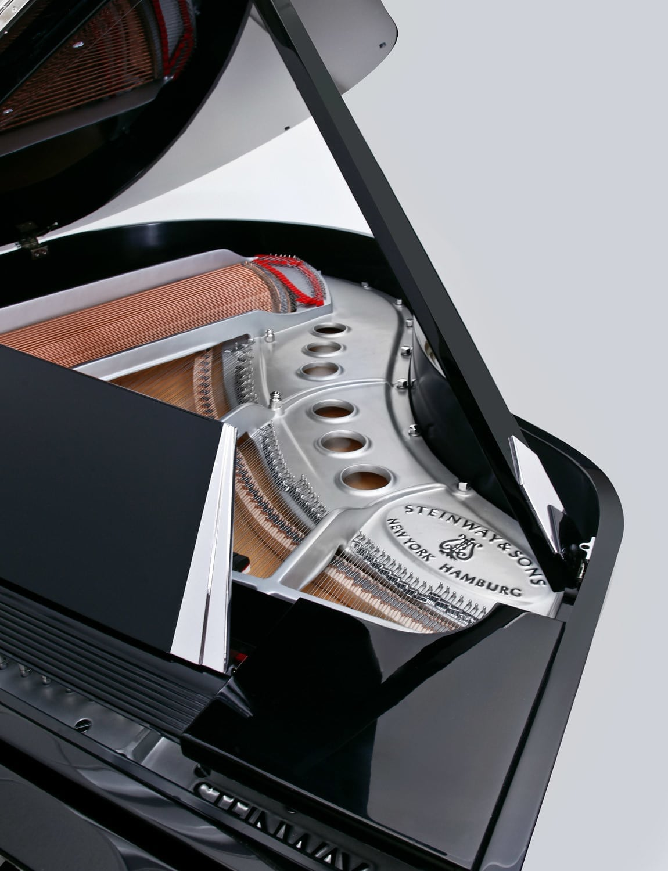 Custom Pianos